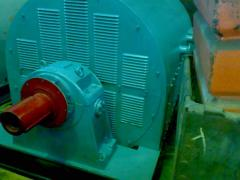 электродвигатель СТД-3150-2Р УХЛ4.