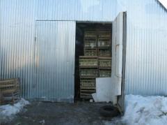 Хранилища для овощей и фруктов от производителя