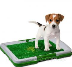 Туалет для собак Puppy Potty Pad 47х34х6 лоток для