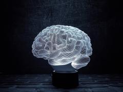 """3D ночник """"Мозг"""" оригинальный подарок на..."""