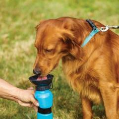Портативная бутылка-поилка для собак в дорогу