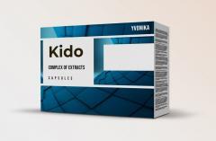 Kido (Кидо)