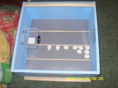Инкубатор Тавшан-1-к150