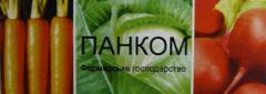 Капуста белокочанная, продажа, Украина