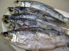 Fish peled