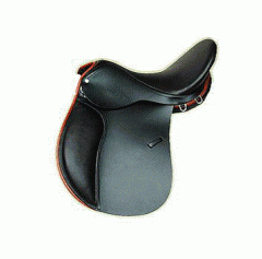 Saddle sports for a horse
