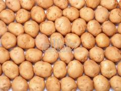 Of potatoes tubers Vinnytsia to buy