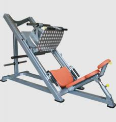 Exercise machines on Free Scales of VADZAARI