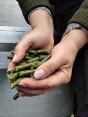 Alfalfa Granules, Alfalfa Hay