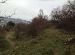 Продается земельный участок в г. Ялта, гора