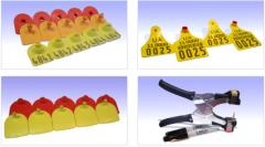 Eartabs for pigs wholesale of office the dealer in