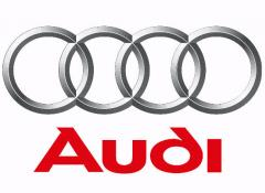 Auto parts and Audi accessories.