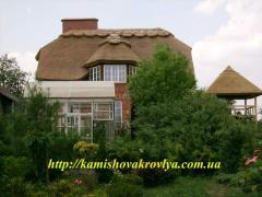 Tømmer hus