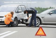 Поліс страхування авто, електронний поліс, ОЦВ,