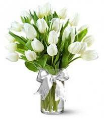 Квіти ТЮЛЬПАНИ (зріз)