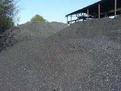 GSSh (0-13) coal
