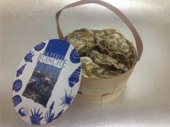 OYSTERS | Small basket White Pearls No. 1 (6