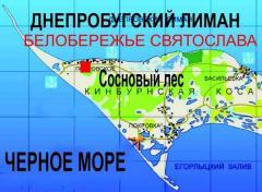 Отдых на Черном море+сосновый лес в национальном