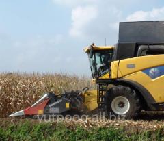 Harvester corn Dominoni S978B the 8th line