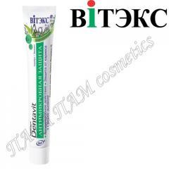 Зубная паста DENTAVIT Антимикробная защита Серебро