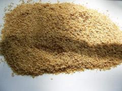 Bran barley Grain