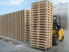 Production and sale of europallets of new wooden