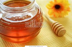 The honey collected in forest apiary