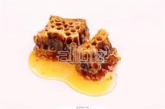 Products of beekeeping in assortmen