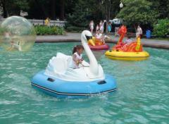 Electroboat Lebed