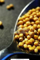 Семена Горчица белая Талисман купить оптом Украина