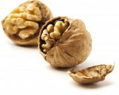 Kernels of nuts