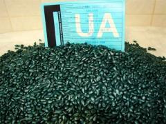Семена подсолнечника ФОРВАРД. С доставкой.