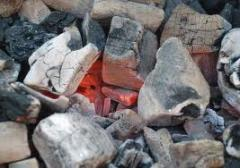 Birch wood to wholesale coal