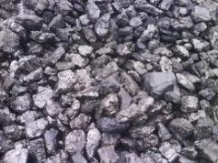 Charcoal ash-tree price