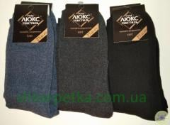 Men's terry socks