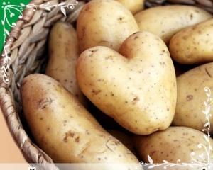 Картофель семенной экологически чистый