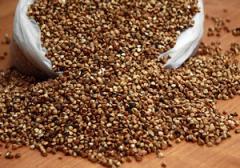 Зерно гречки