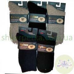 Шкарпетки чоловічі медичні з собачої шерсті SULTAN