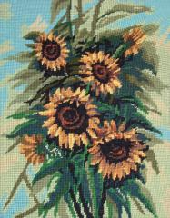 Picture Sunflowers
