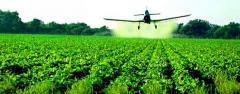 Pesticides adjuvan
