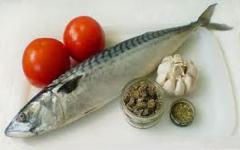 Mackerel fresh-salted