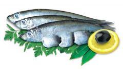 Herring fresh-salted cues, salty fish Cherkasy,