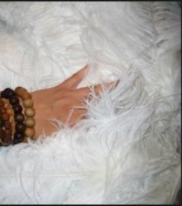Fillers for pillows down and feathers (feather)