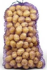 """Картофель белый сорт""""Мелоди"""" в сетках по 25кг"""