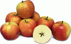 Яблоки сорта Гала Маст