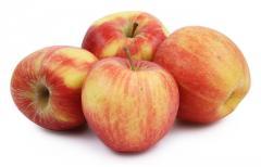 Яблоки сорта Джонаголд