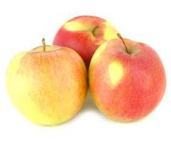 Яблоки сорта Лиголь
