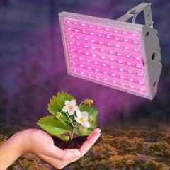 Освітлення для рослин