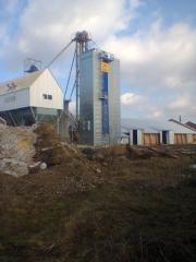 مجموعات الحبوب المعالجة