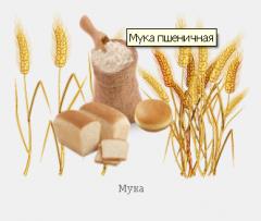 Мука пшеничная оптом от производителя, Украина,